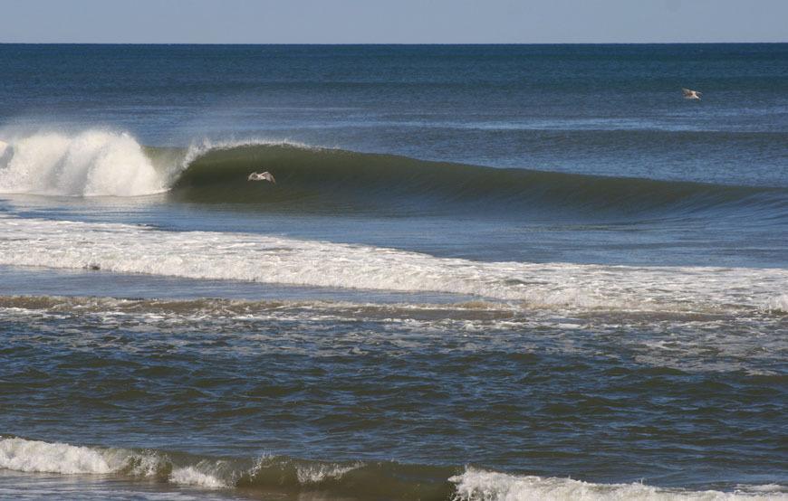 belmar-surfing-18