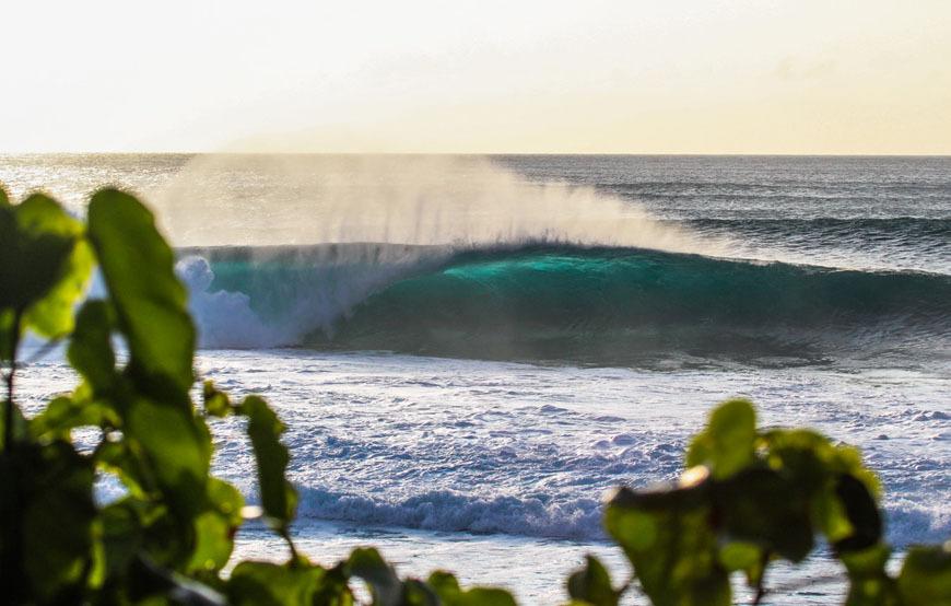 hawaii surfing photos