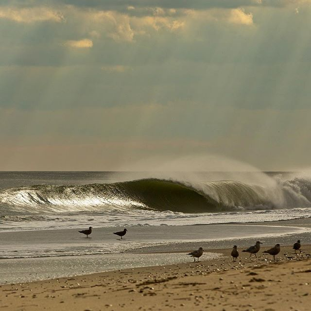 new-year-swell-4