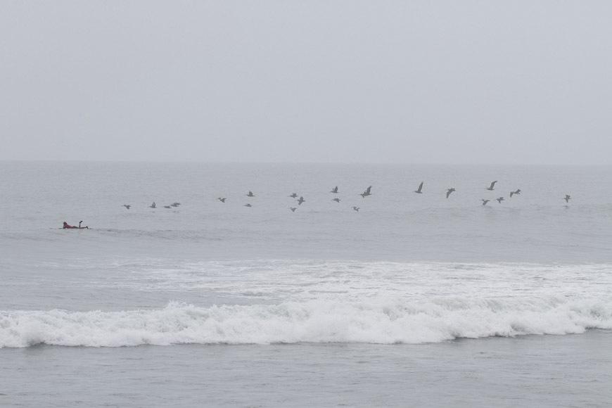 page2-chicama-peru-surf-photos-19