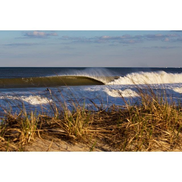 spring-swell-6