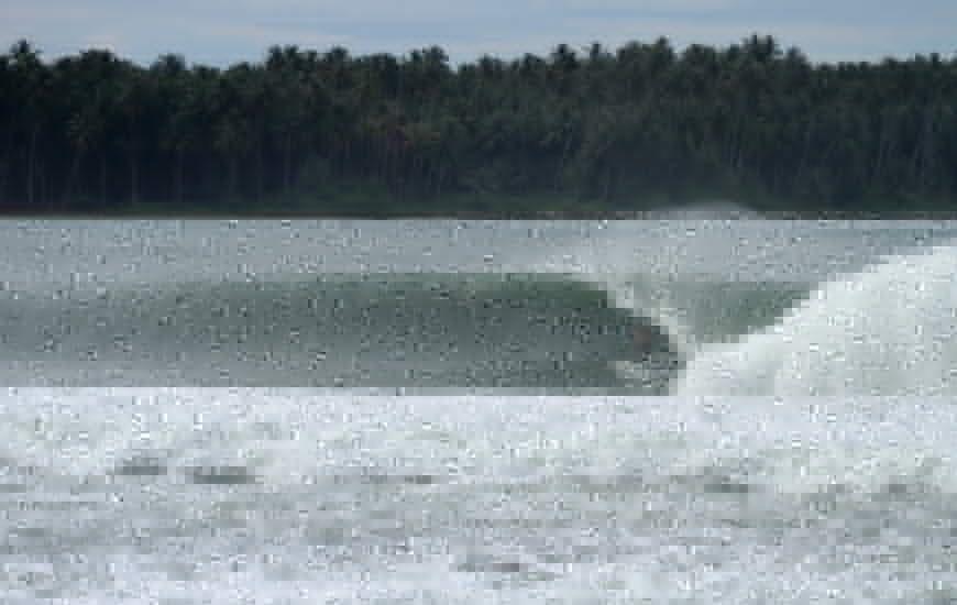 Dan Callaghan Surfboard Shaper