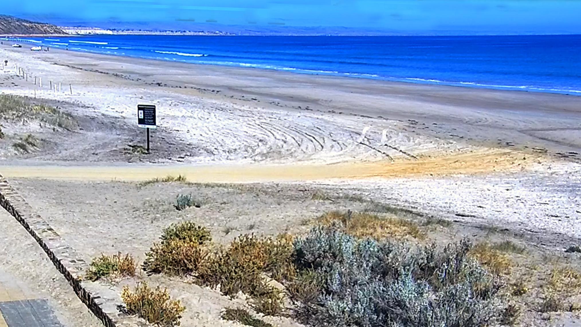 moana beach surf cam